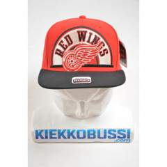 Detroit Red Wings Arched snapback One Size